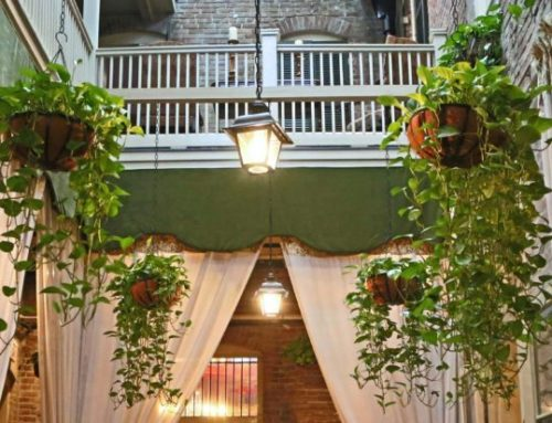 Our Indoor Courtyard
