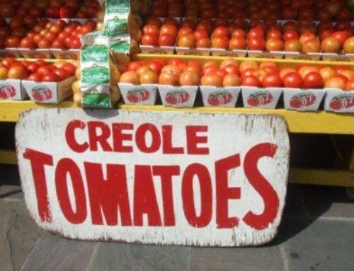 Creole Tomato Season